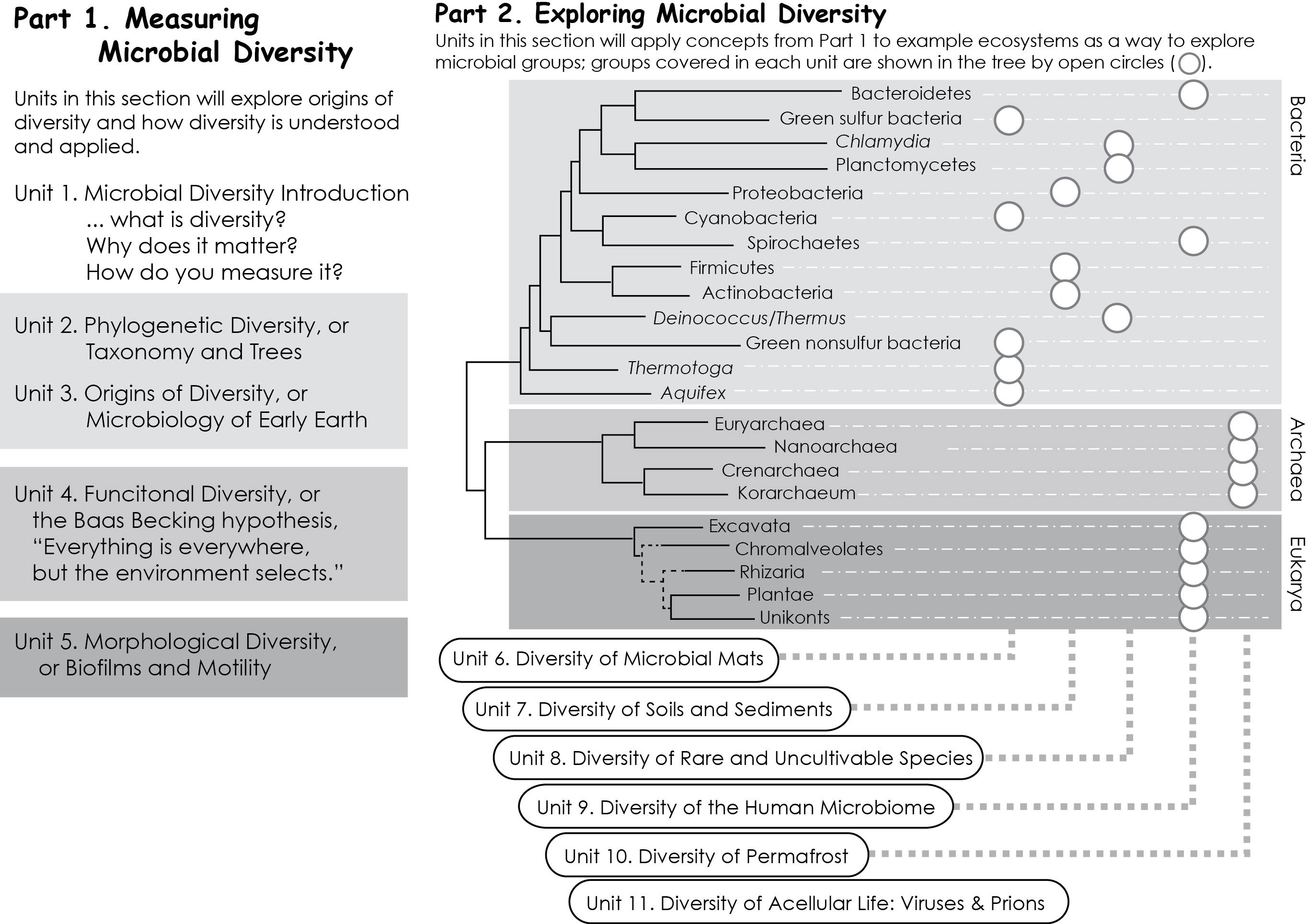 Microbial Diversity Graphical Syllabus d